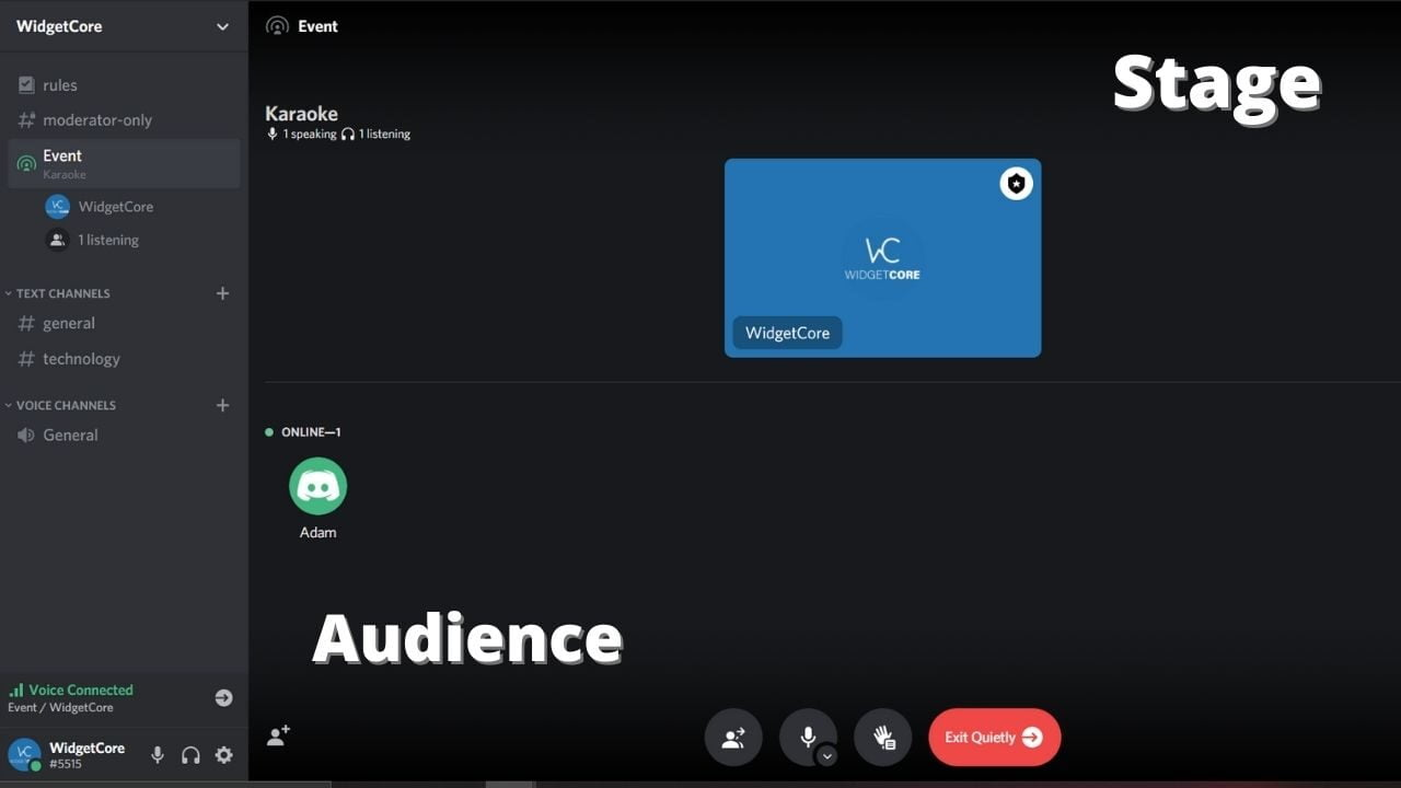 discord stage channel